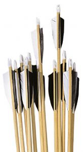 Set 12 un-spined wood arrows